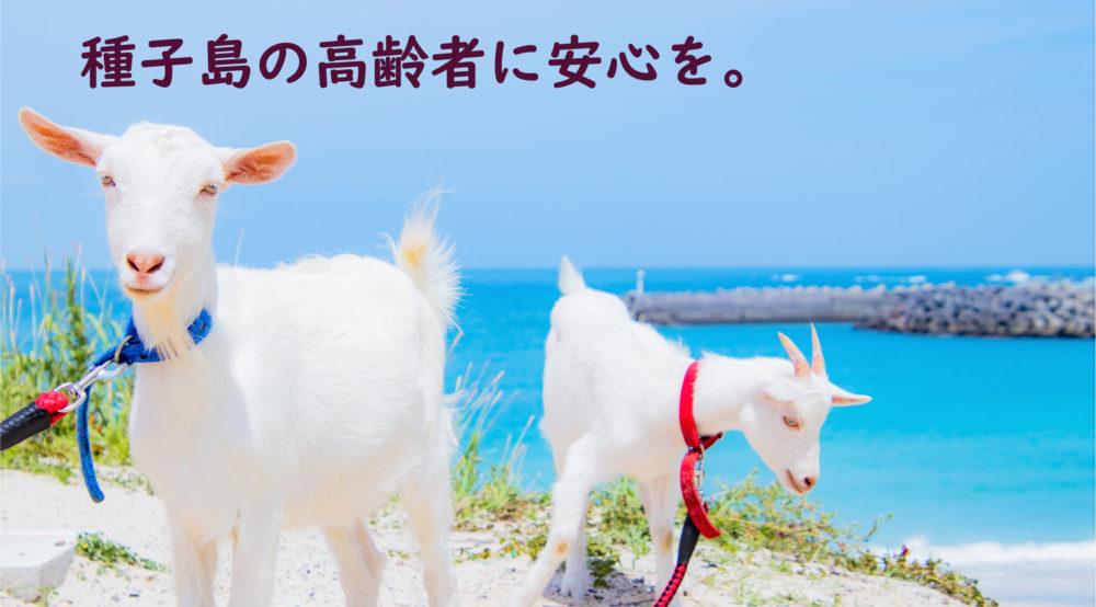 トップページへ|浦田海水浴